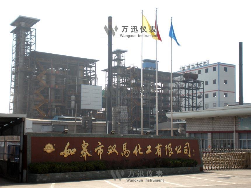 南通双马化工有限公司外景